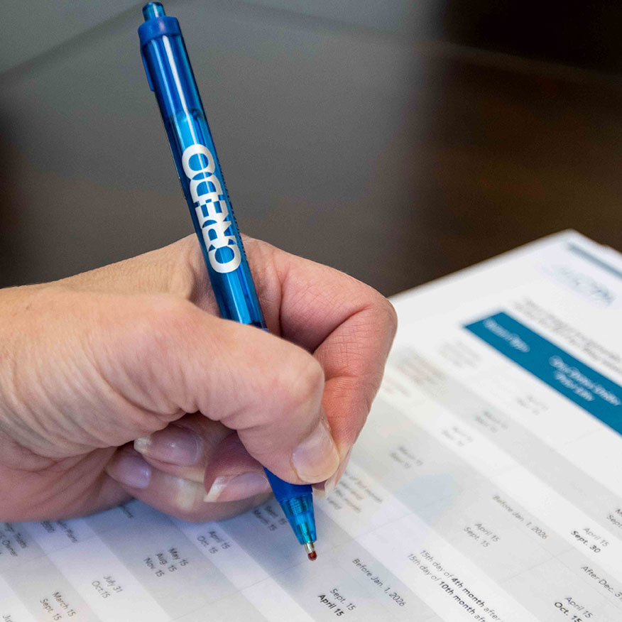 interim or fractional CFO working with financial data