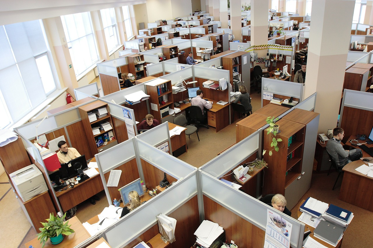 Employment - Credo Financial Services