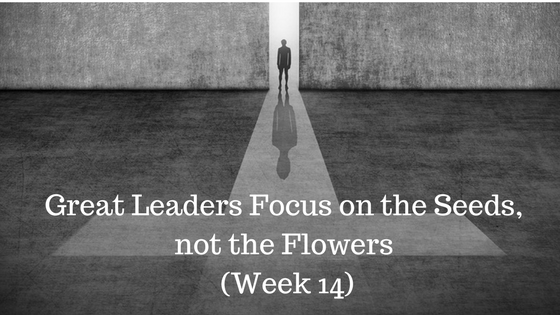 Great Leaders Focus on the Seeds not the Flowers - Week 14 - Credo Financial Services - Atlanta, GA